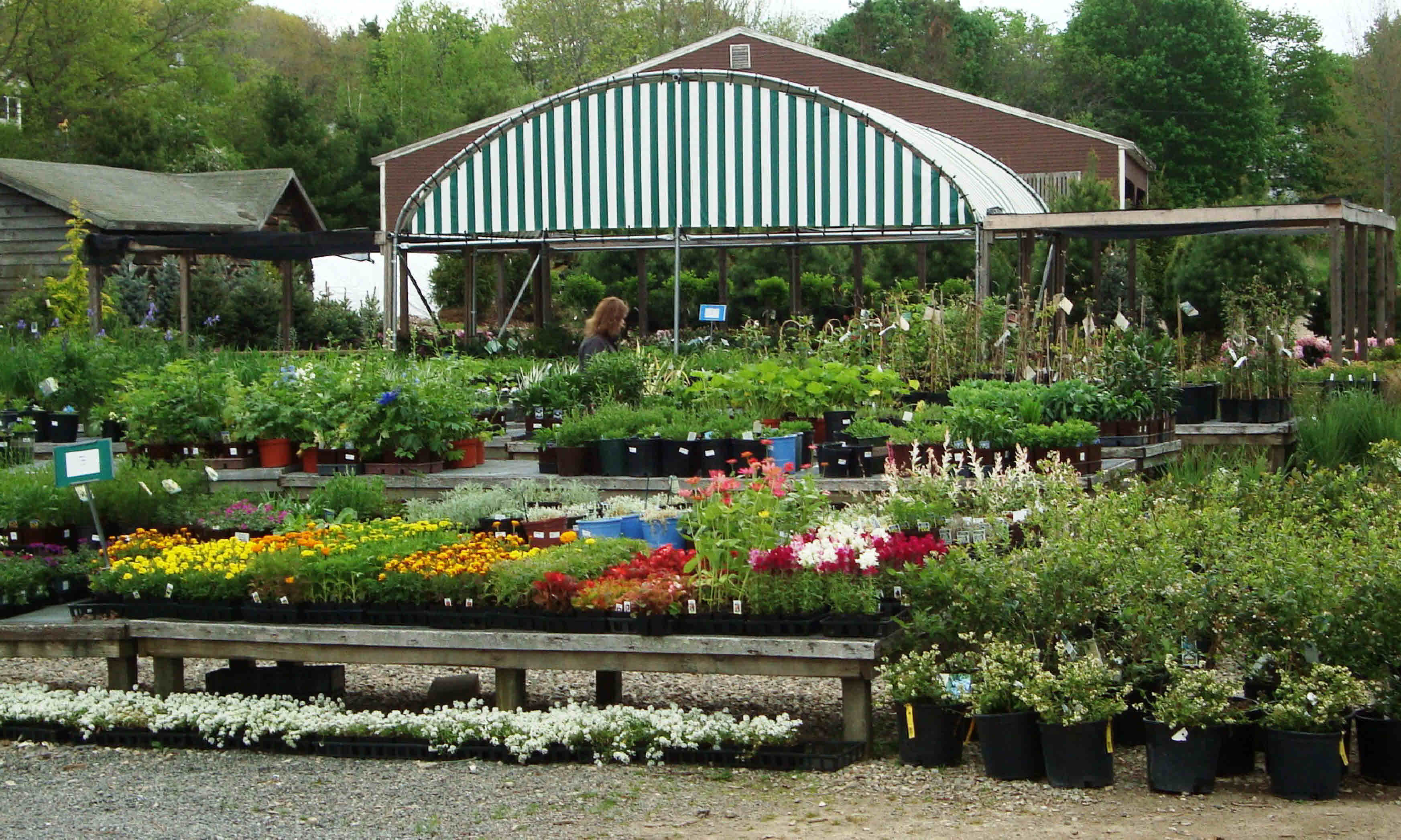 Conley S Garden Center Landscaping Boothbay Harbor Maine